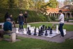chess, playing chess, chess games, chess online