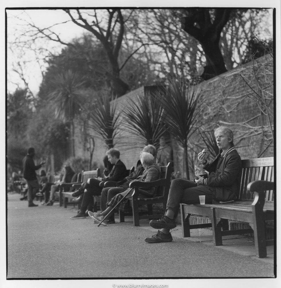 holland park, people on the beach, relax in park