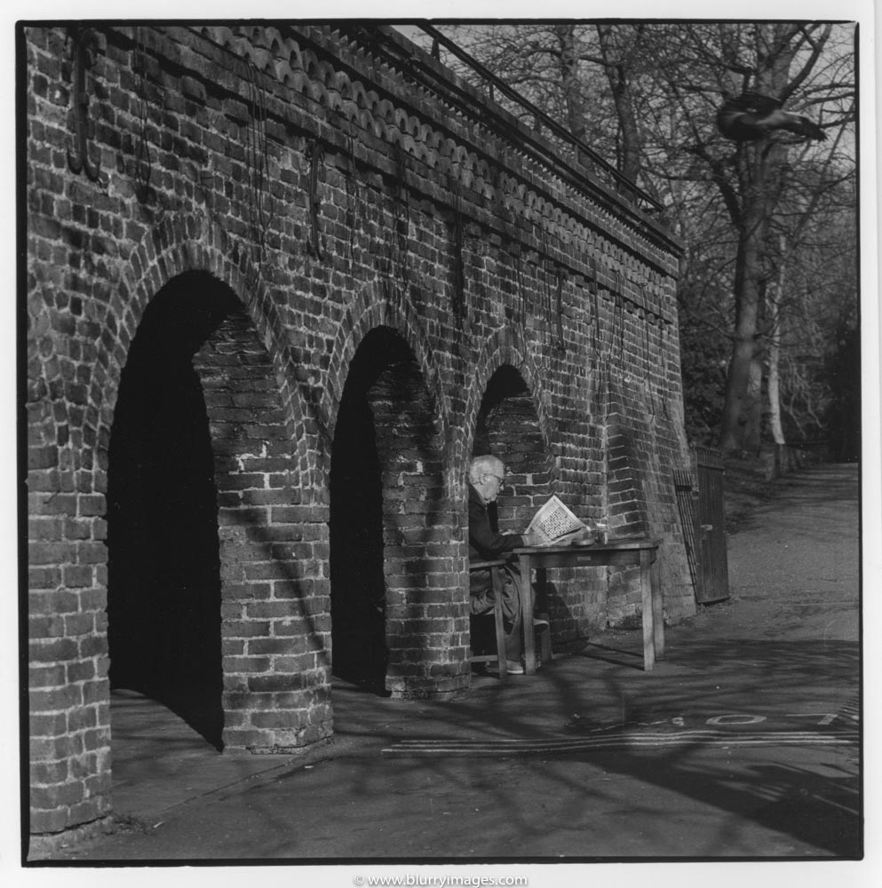 brick wall, holland park, man reading newspaper