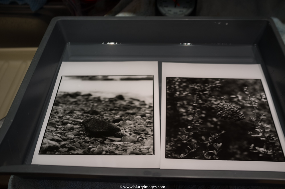 darkroom prints, stone on the riverbank